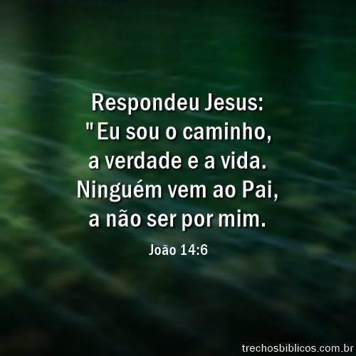 João 14:6 16