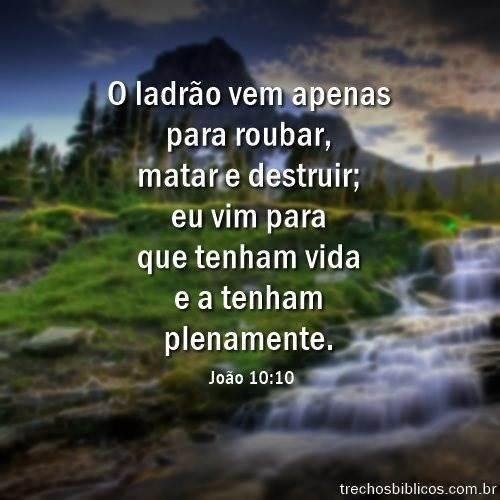 João 10:10 14