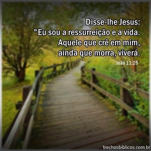 João 11:25 10