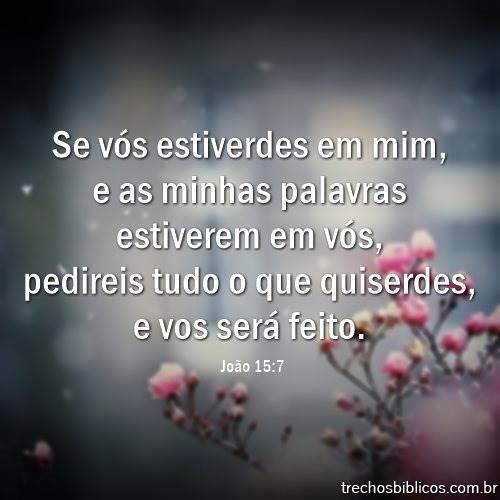 João 15:7 11