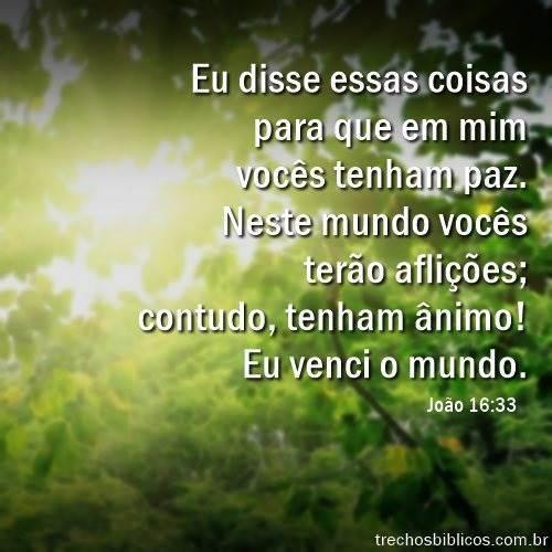 João 16:33 18