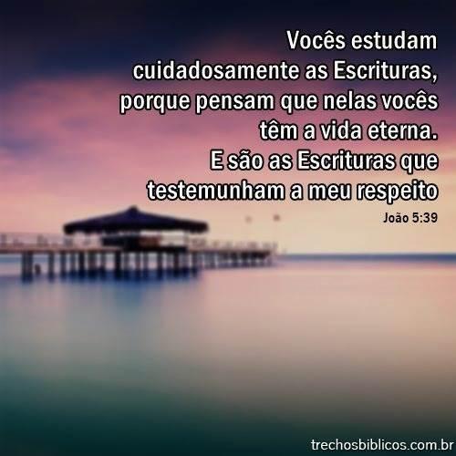 João 5:39 12