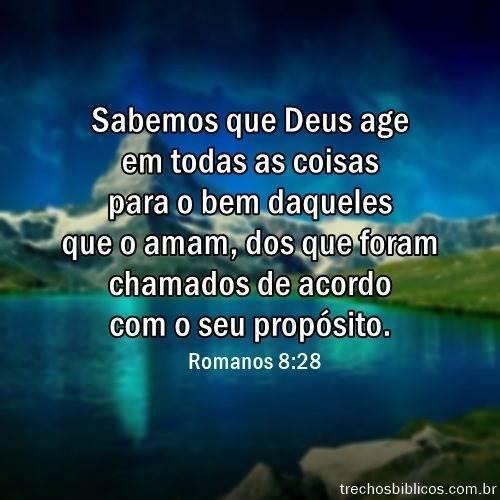Romanos 8:28 13