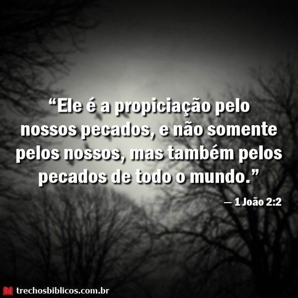 1 João 2:2 16