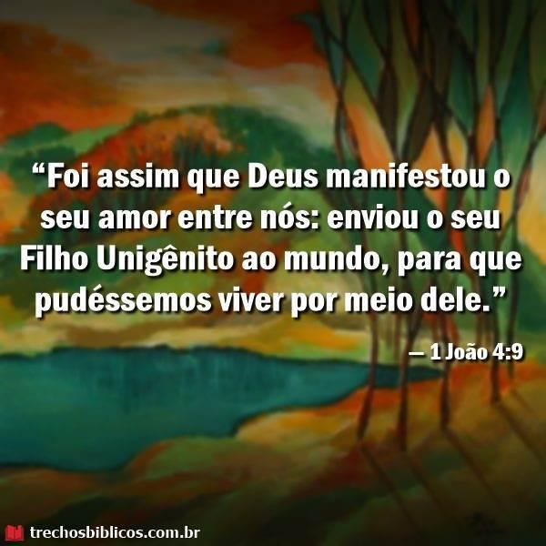 1 João 4:9 15