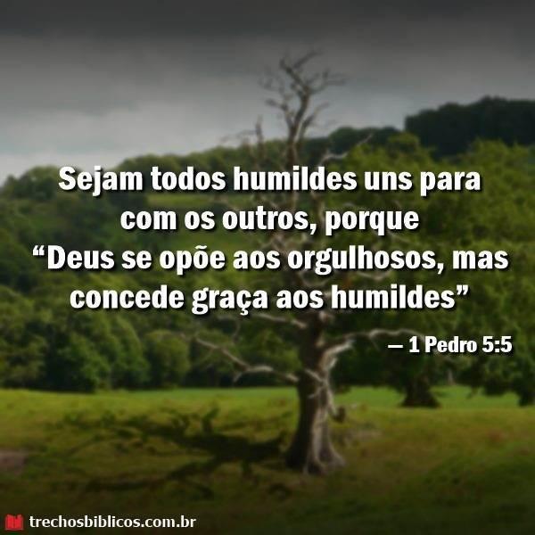 1 Pedro 5:5 1