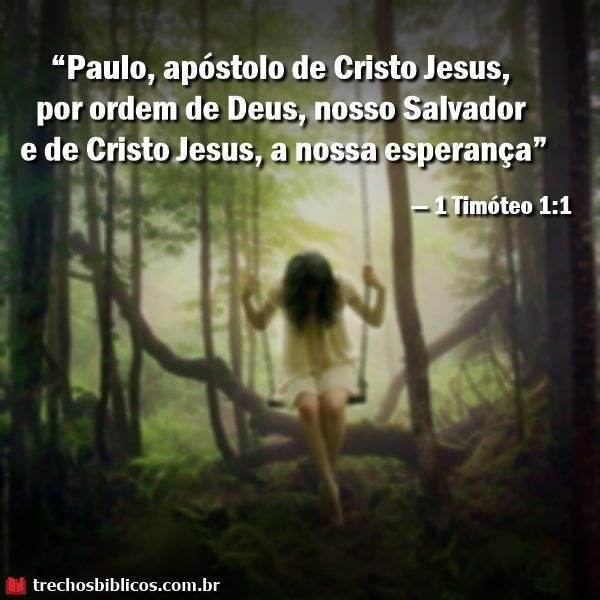 1 Timóteo 1:1 16