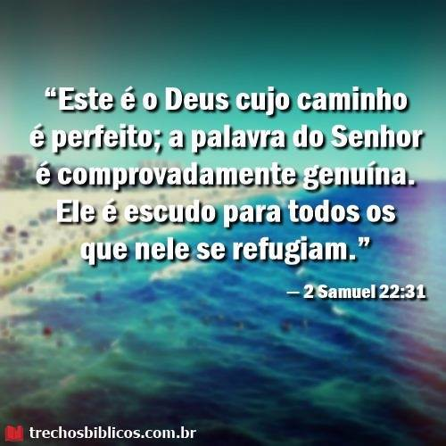 2 Samuel 22:31 3