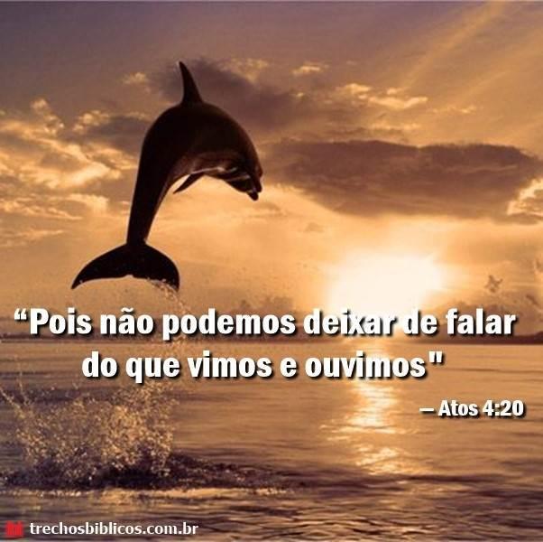 Atos 4:20 8