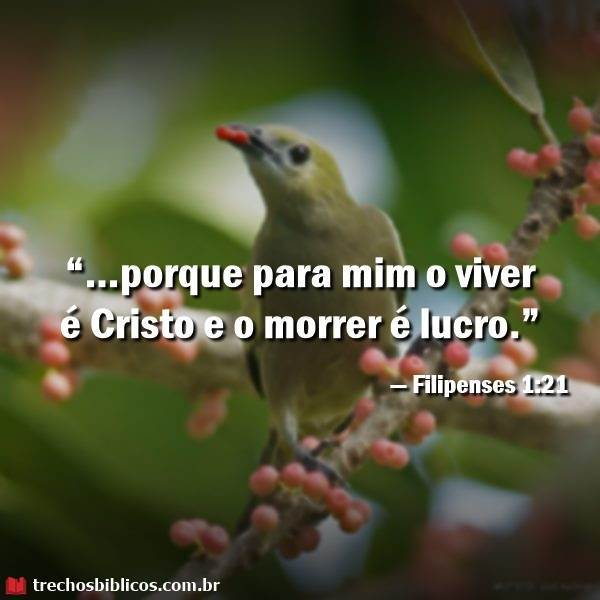 Filipenses 1:21 19