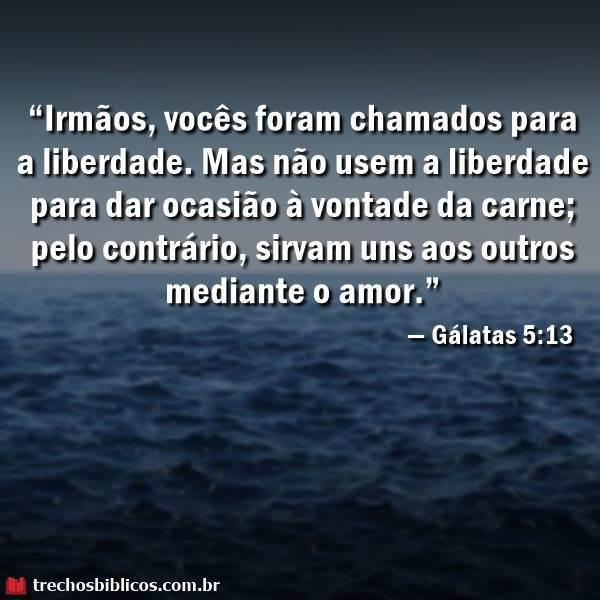 Versiculos De Amor Ao Proximo Versiculos Biblicos