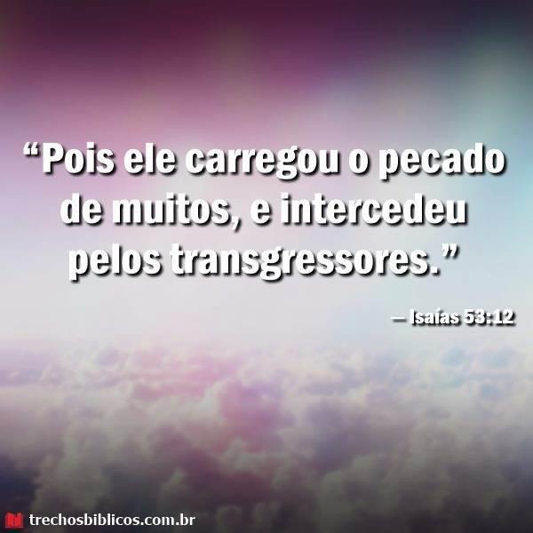 Isaías 53:12 19