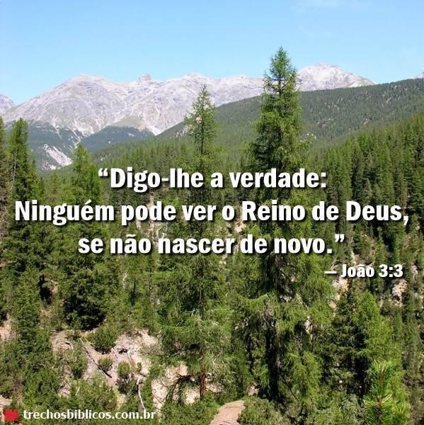 João 3:3 7