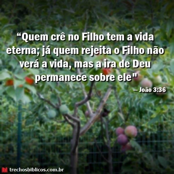 João 3:36 13