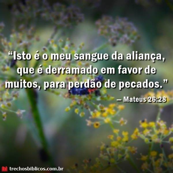 Mateus 26:28 16