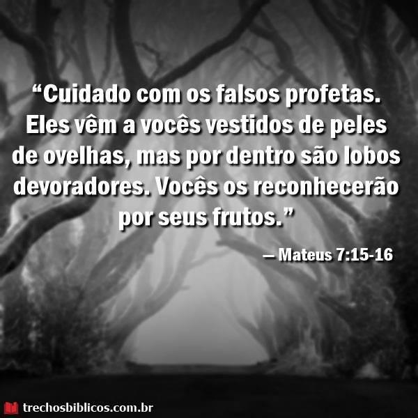 Mateus 7:15-16 5