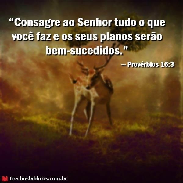 Provérbios 16:3 15
