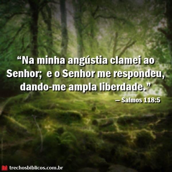 Salmos 118:5 13