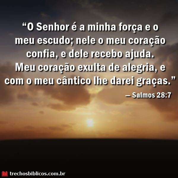 — Salmos 28-7