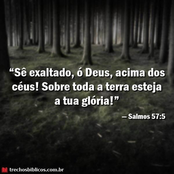 Salmos 57:5 17