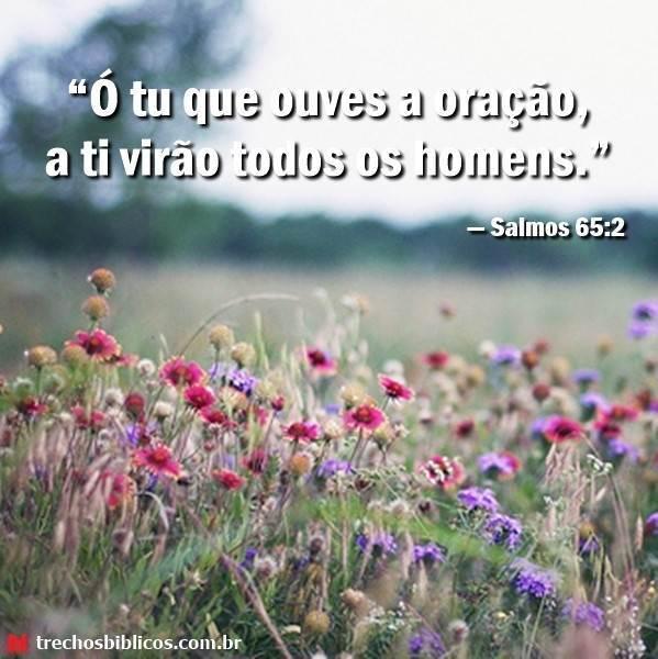 Salmos 65:2 6