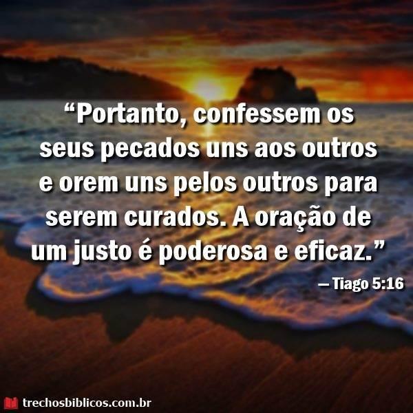 Tiago 5:16 16