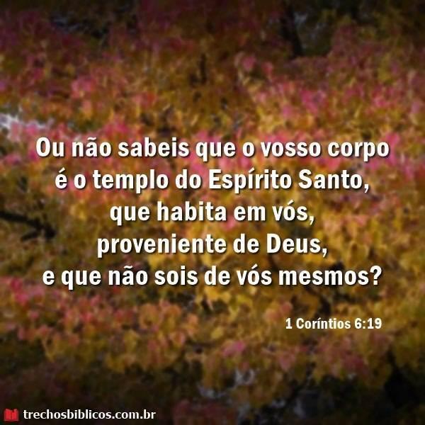 1 Coríntios 6:19 3