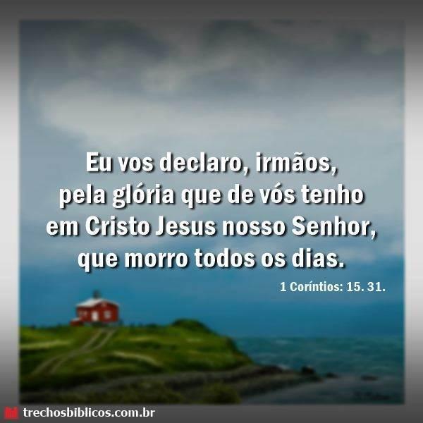 1 Coríntios 15:31 17