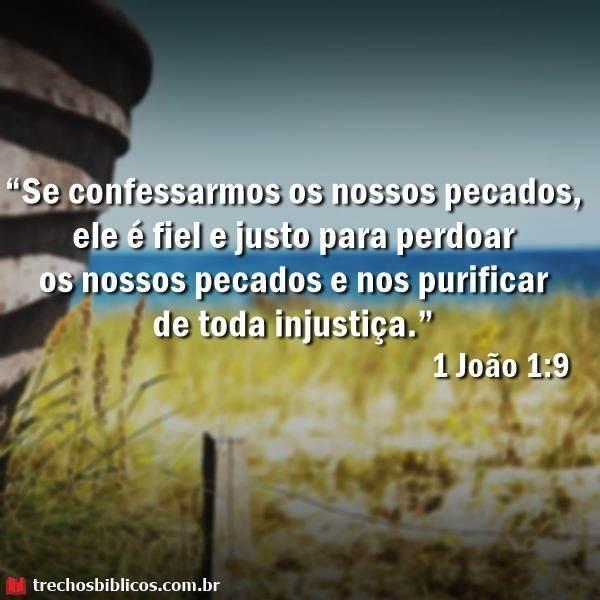 1 João 1:9 10