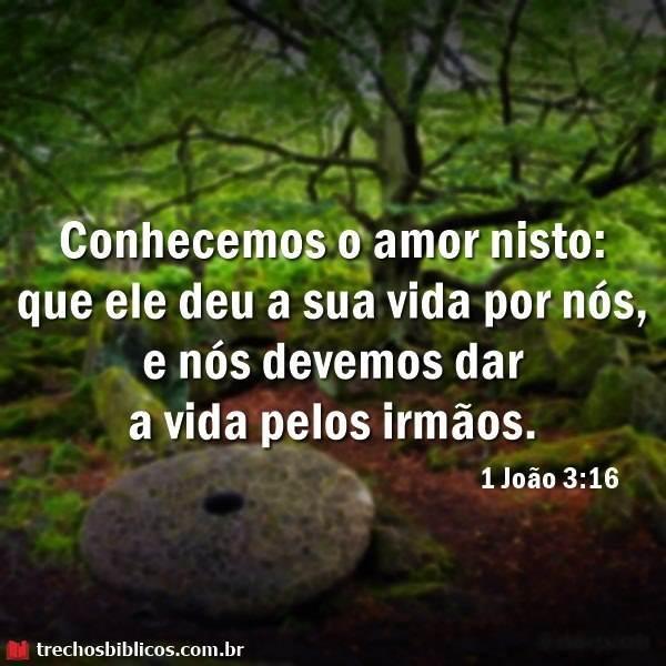 1 João 3:16 5