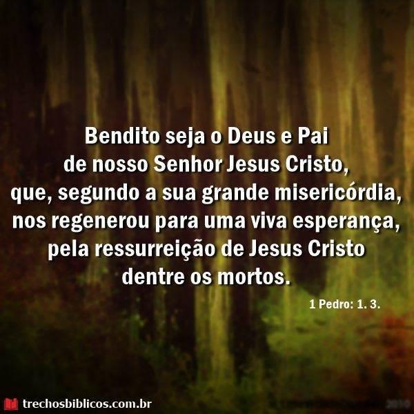 1 Pedro 1:3 7