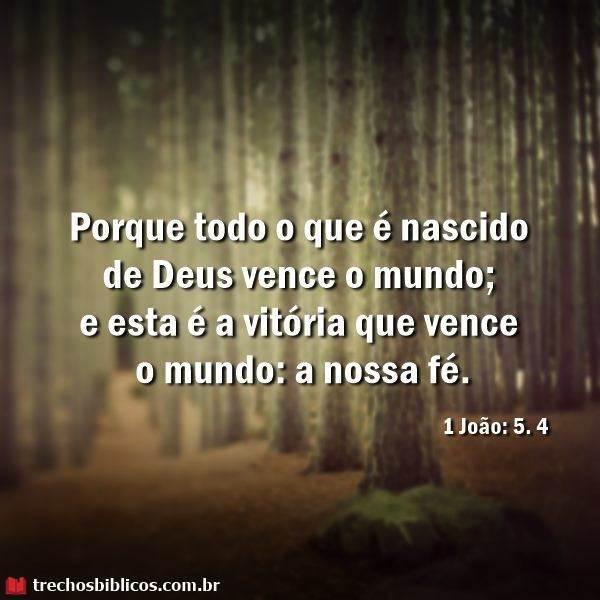 1 João 5:4 3