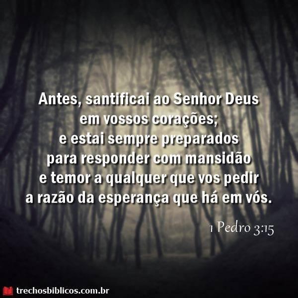 1 Pedro 3:15 5