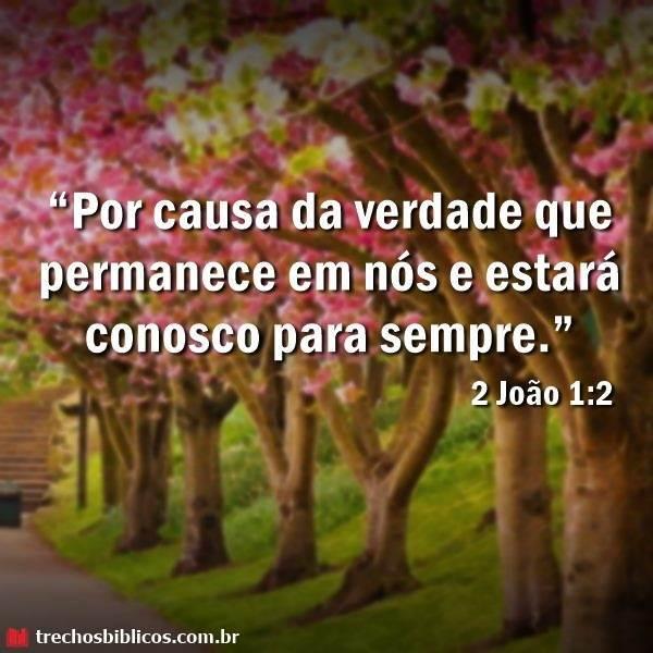 2 João 1:2 33