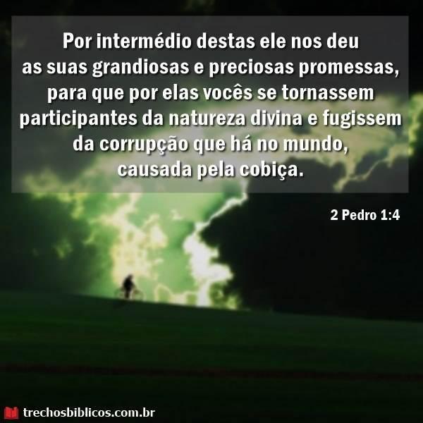 2 Pedro 1:4 4