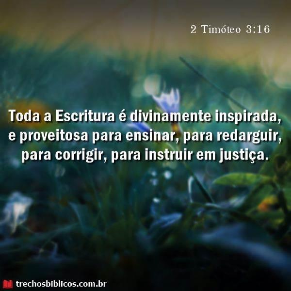 2 Timóteo 3:16 12