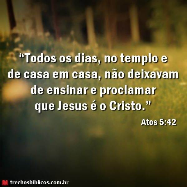 Atos 5:42 14