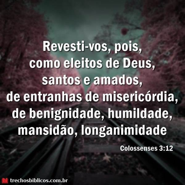 Colossenses 3:12 12
