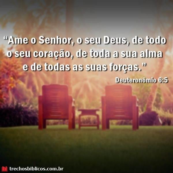 Deuteronômio 6:5 4