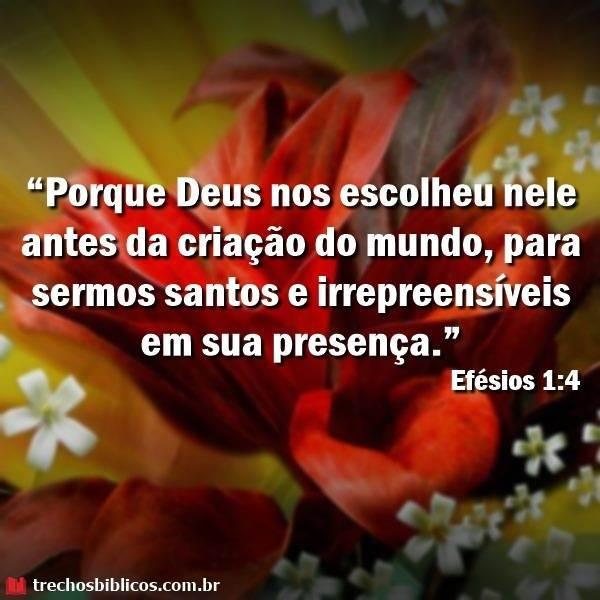 Efésios 1:4 11