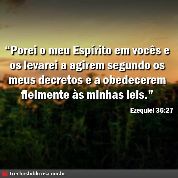 Ezequiel 36:27 13