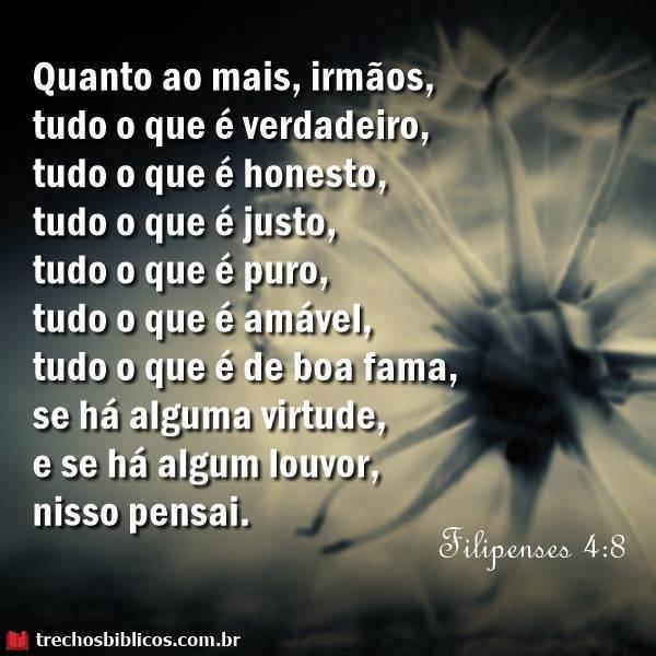 Filipenses 4:8 5