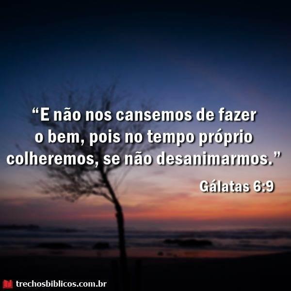Gálatas 6:9 12