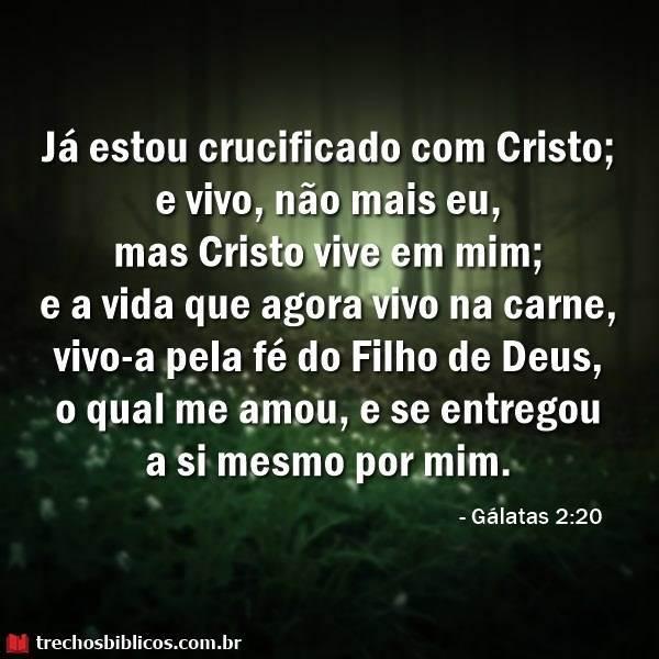 Gálatas 2:20 4