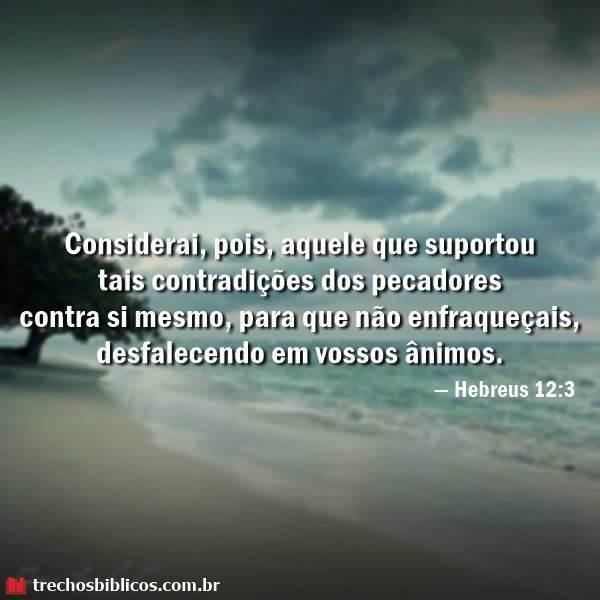 Hebreus 12:3 20