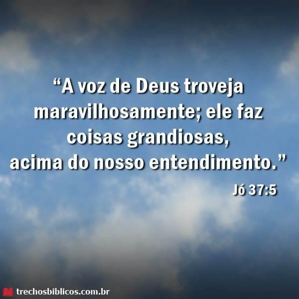 Jó 37:5 12