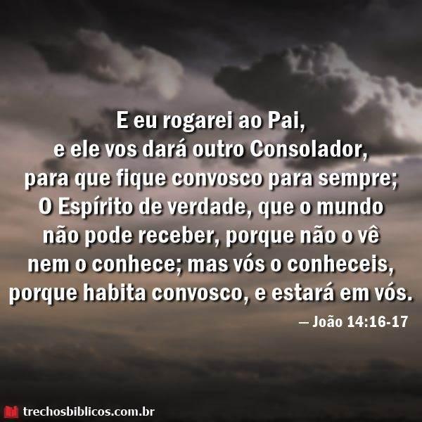 João 14:16-17 14