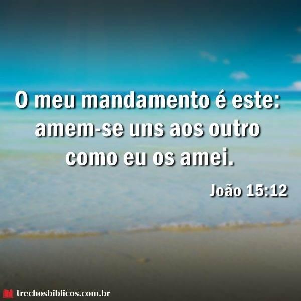Versículos de João que falam sobre o Ministério de Jesus 5