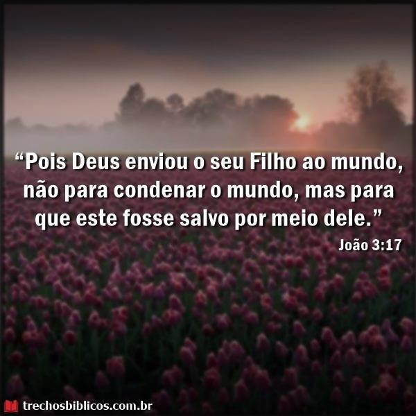 João 3:17 8
