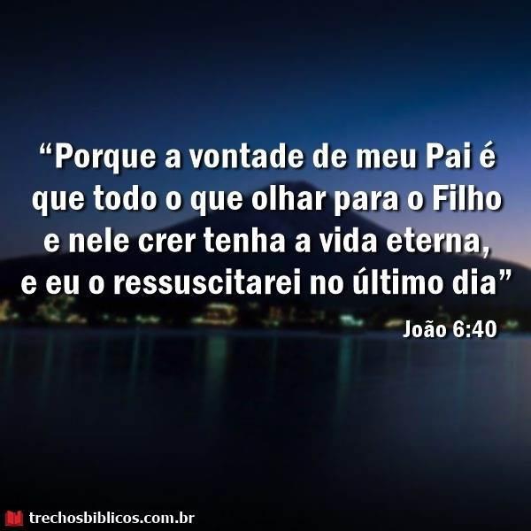João 6:40 6